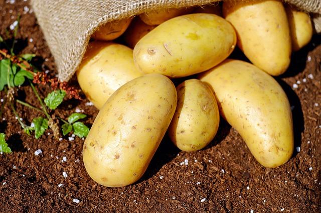 Ziemniaki – odmiany ziemniaków i ich wartości odżywcze